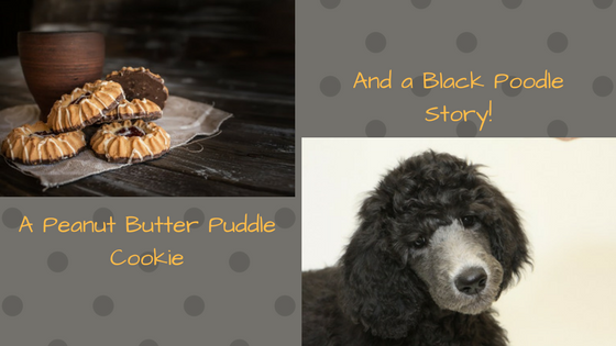 A Story about a cookie and a poodle